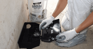 Commercial Rodent Control in San Angelo, TX